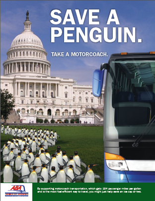 Save a Penguin, Take a Motorcoach